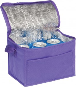 Eco Friendly 6 Can Cooler Bag.