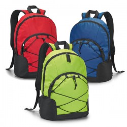 Chameleon Laptop Backpack