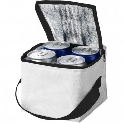 Drew 4 can cooler bag