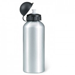 Alcoy Metal Drinking Bottle (600 Ml)